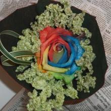 7色のバラのアレンジメント